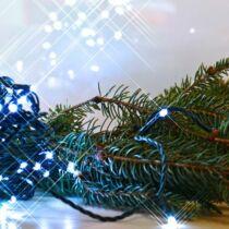 Rizsszem LED fényfüzér 100 db hidegfehér LED