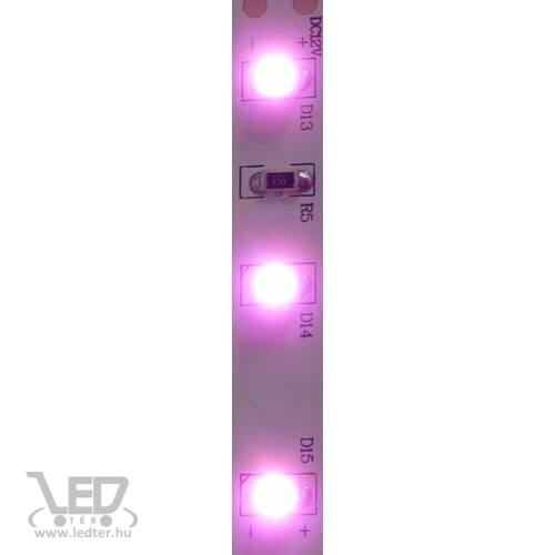 Pink 60 LED/m 3528 chip 4,8W 40 lumen/m LED szalag